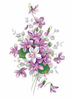 English violets.jpg